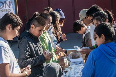 Chilo November 2015-25