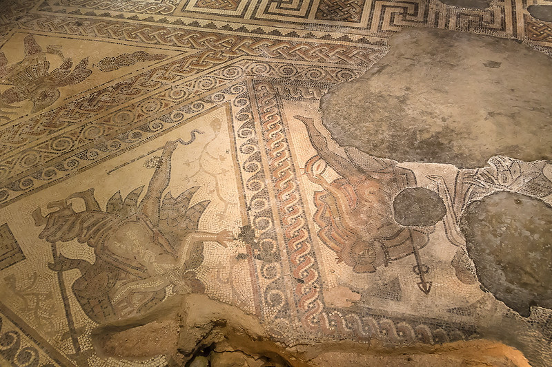 16th Sep[ 2016:  All  of the mosiacs are very intricate at Chedworth Villa
