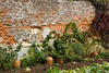 16th Oct 11:  Kitchen Garden Wall at Greys Court