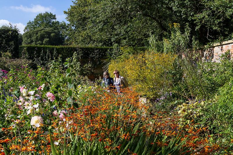 1st Oct 2015:  The Old Garden