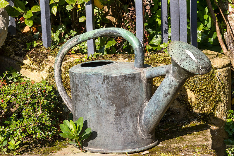 1st Oct 2015:  Old Watering can
