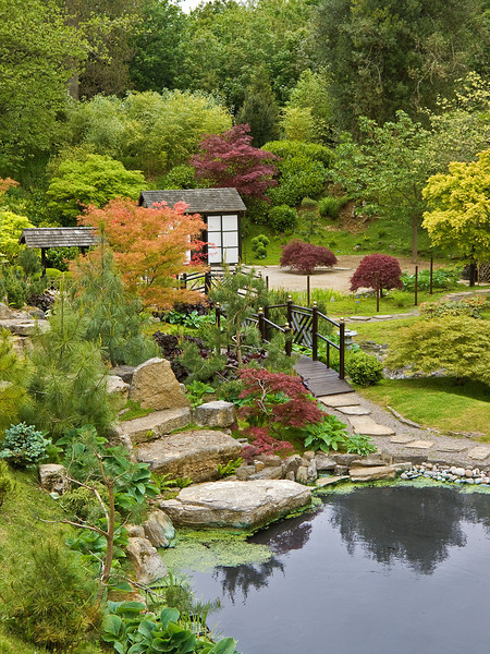 20th May 12:  The Japanese Garden at Kingston Lacey