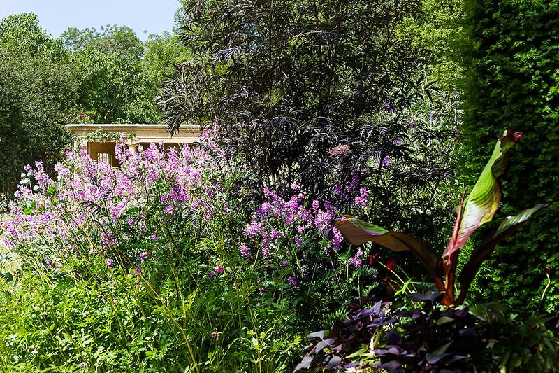 10th Jul 2015:  Tintinhull Gardens