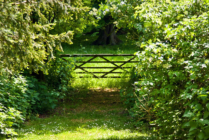 27th May 12:  Old farm gate at The Vyne