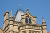 11th Nov 11: Weather vane-Tyntesfield