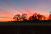 14th Mar 2016:  Leiston Sunset from our friends back garden