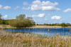2nd May 2016:  One of the lakes in the Stavely Nature Reserve