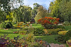 30th Sep 07:  Autumn colours at Bressingham Gardens