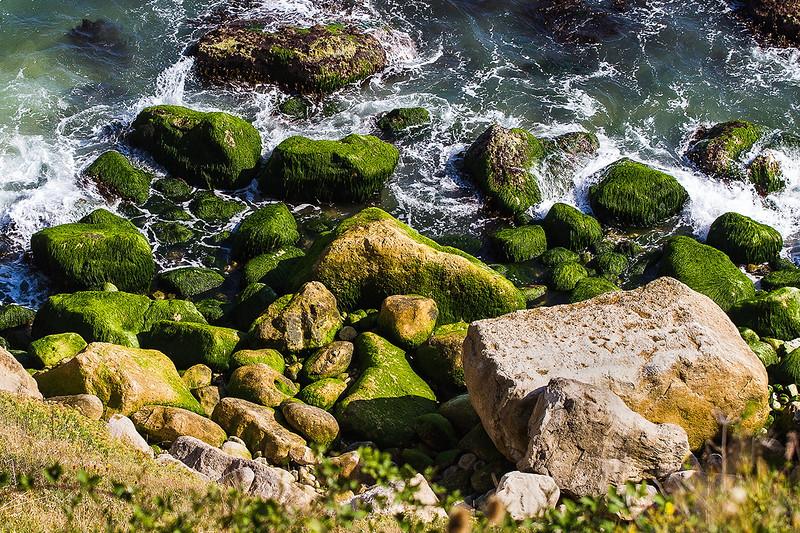 10th Sep 2014:  Green Rocks on Portland Bill