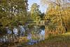 12th Nov 11:  The south lake at South Hill Park