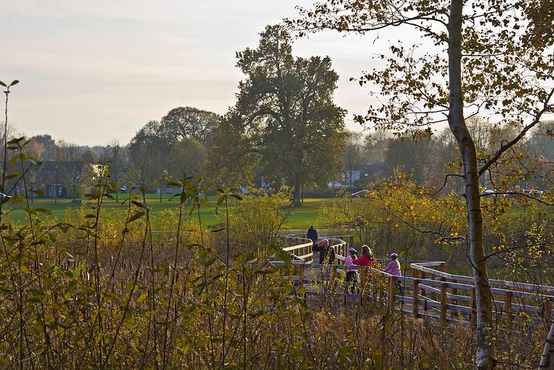 13th Nov 11:  Wetlands Bridge in South Hill Park, Bracknell