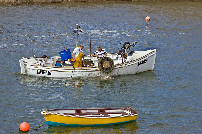9th Sep 10:  Lifting a Lobster pot in Porthleven Harbour entrance
