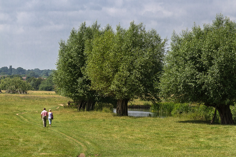 16th Jul 14:  Beside the Stour at Flatford