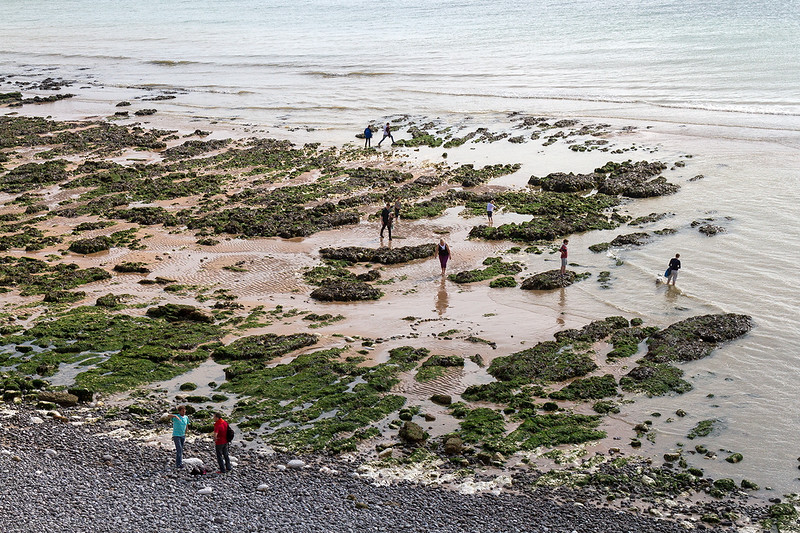 13th Aug 2015:  An exceptionally low tide shows a different view of the beach at The Birling Gap
