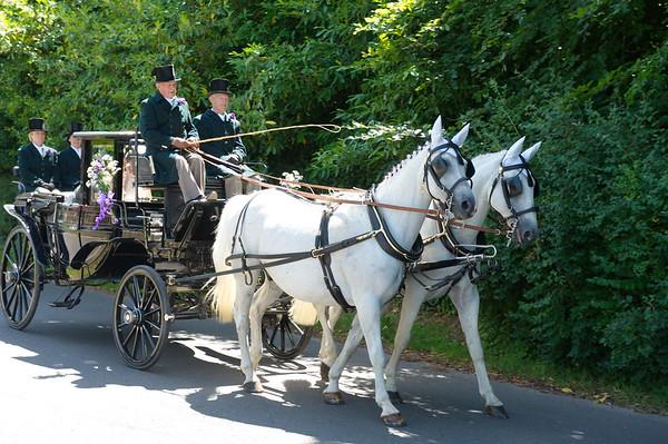 Andrew & Nathalies Wedding - 7/7/17