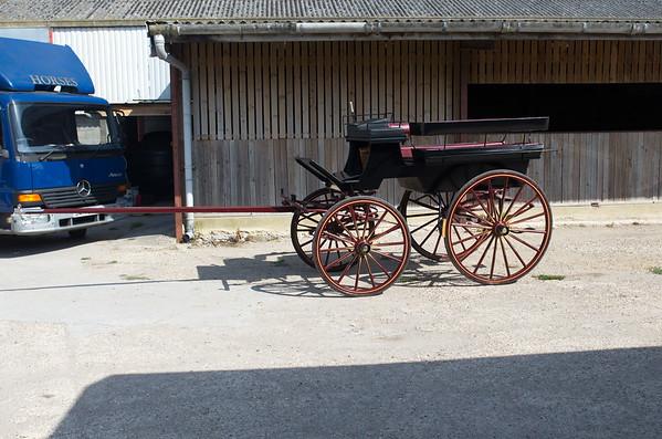 Bishopstone Carriage Drive - 16/8/15