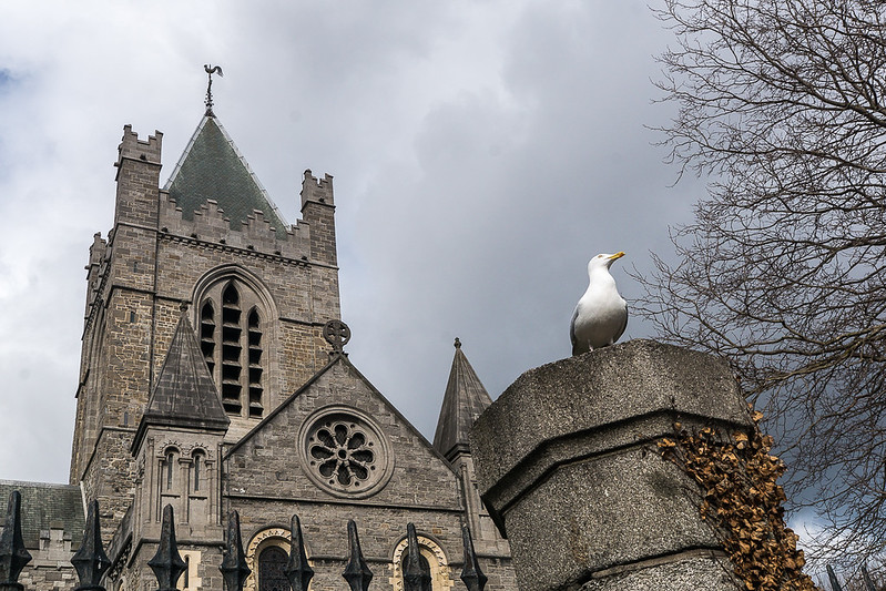 Christ Church Cathedral: Dublin, Irland
