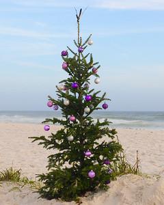 PBeach_Christmas 2015-173a