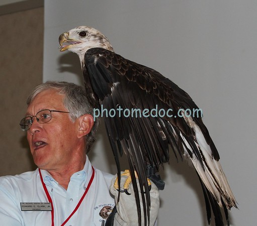 Buddy the Eagle and Ed