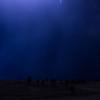 A Blue Storm