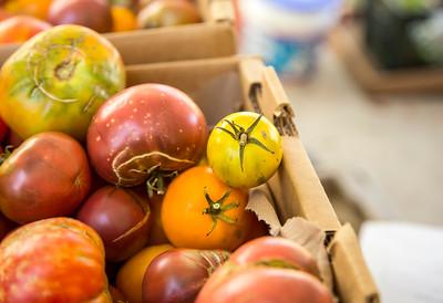 Tomatoes_5086_13x19