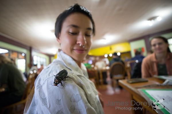 Jess and rhino beetle
