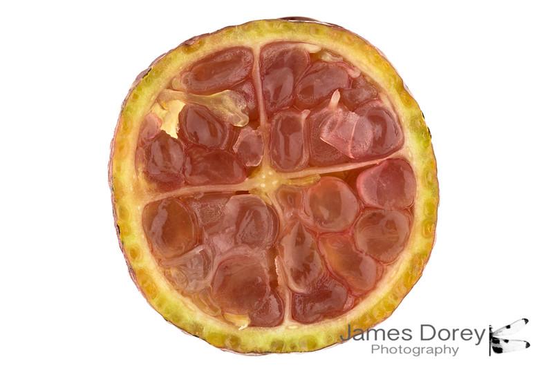 red Finger Lime 15p.jpg