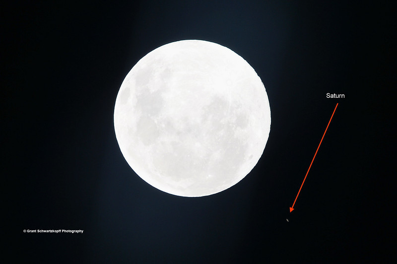 Occultation of Saturn by the Moon