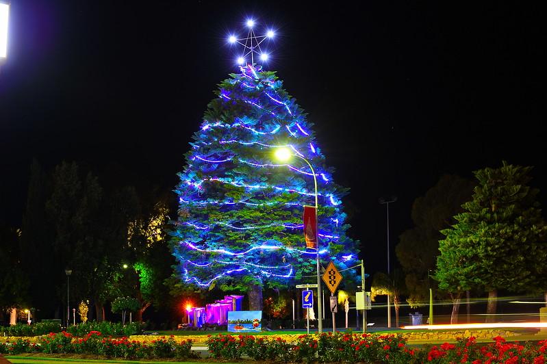 Renmark fountain under the Xmas Tree