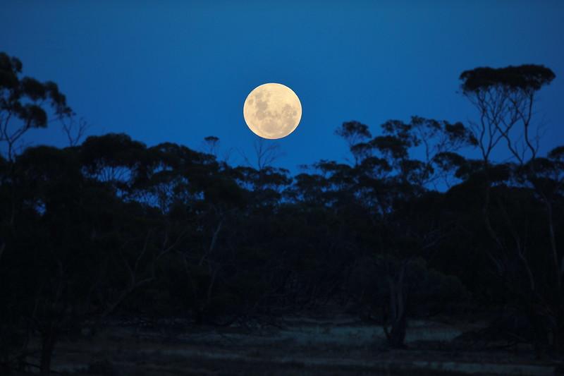 Full moon over Fielkes