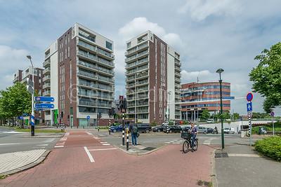 Hilversum - Schapenkamp