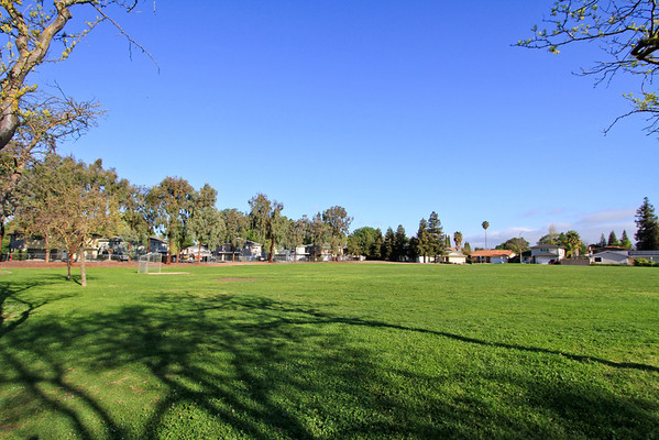 786 Pearlwood Way, San Jose