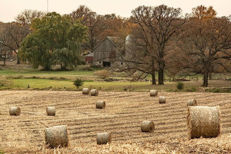 Chaska Farm-4