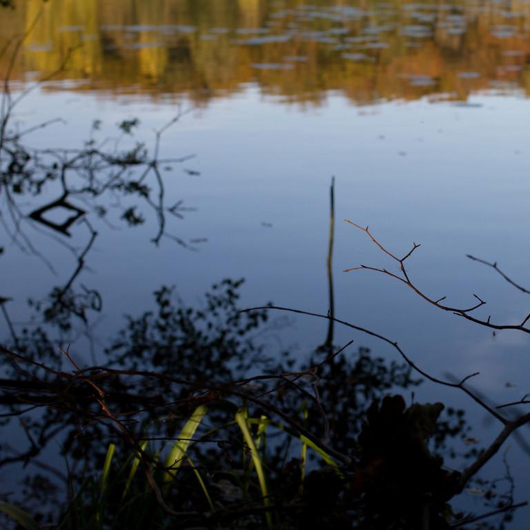 Gurre sø (Lake Gurre).