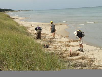 Wilderness Volunteers: 2016 Nordhouse Dunes Service Project