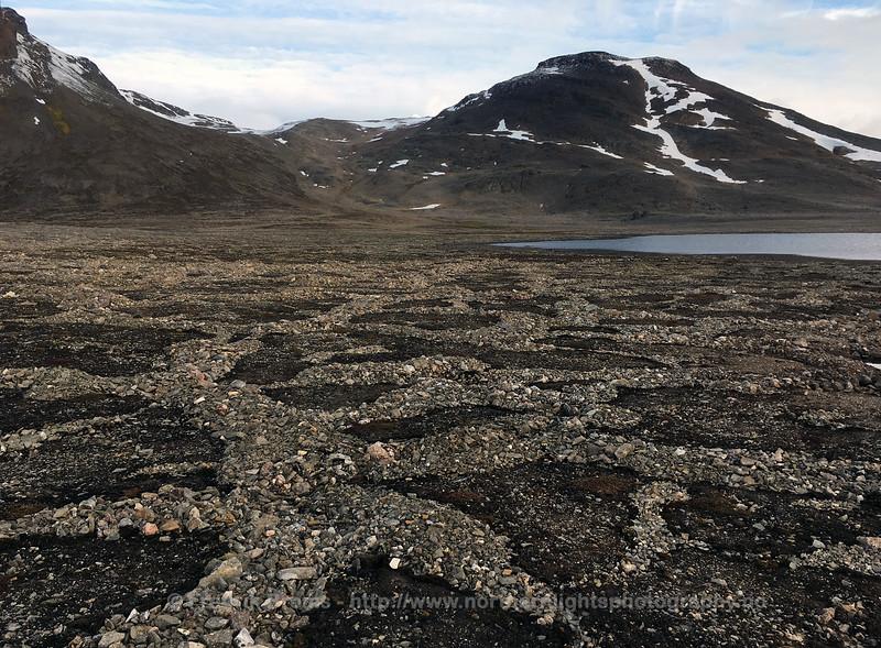 Polygon Landscape, Svalbard