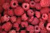 Raspberries, Norway