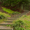 Walking trails on Norfolk Island