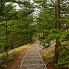Walking trails on Norfolk Island