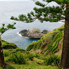 Coast of Norfolk Island