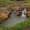 Tiny waterfalls, Norfolk Island