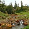 Cascade Reserve, Norfolk Island