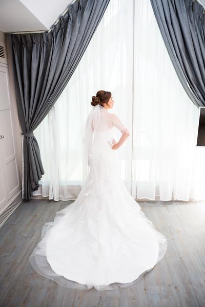 bride-dress-posed-train-veil