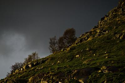 OLYMPUS DIGITAL CAMERA Foto: Ståle