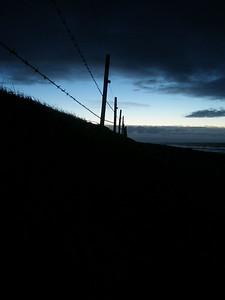 Piggtråd i kveldslys ved Revehamnen på Jæren  Barbed wire at dusk near Revehamnen on the Jæren coast (Foto: Ståle)