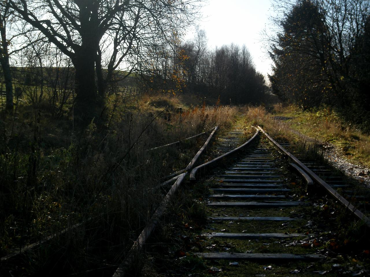 (Foto: Ståle)
