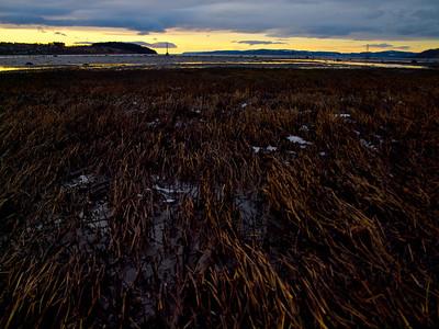 Fjære og golden time i fuglereservatet i Bjørga (Foto: Ståle)