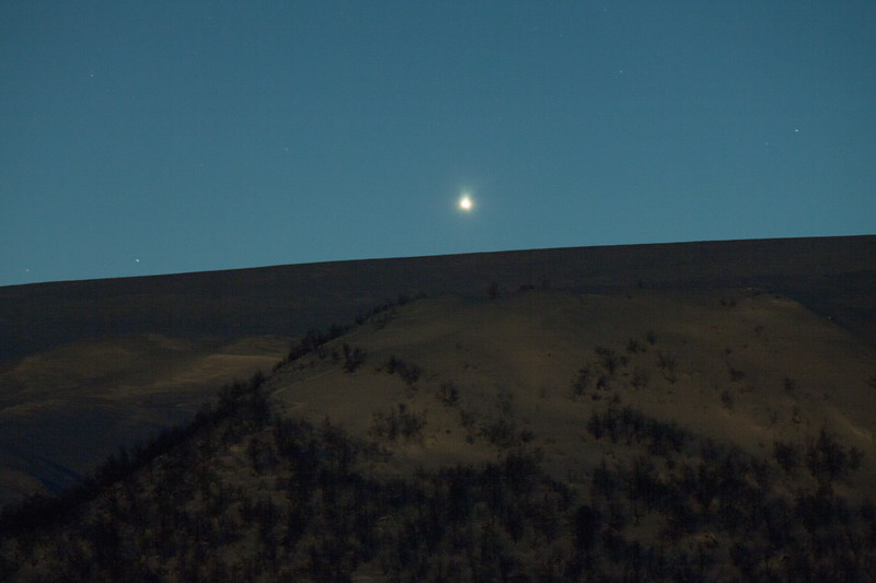 Low Venus, Jotunheimen
