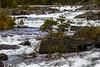 Fra elva Måna rett etter utspringet fra Møsvatnet ved Møsvannsdammen i Tinn kommune i Telemark.