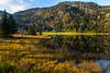 Høstfarger over Moskeid-vatnet i Kviteseid kommune, Telemark